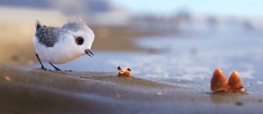 piper-pixar-contesdemantega-faros-cinema-corto-sandra-gomez